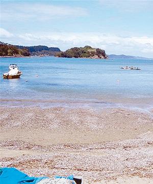 Rawhiti Bay